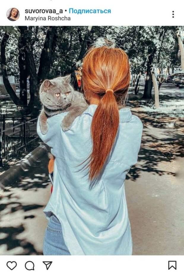 Фото дня: кот вышел на прогулку в Марьиной роще