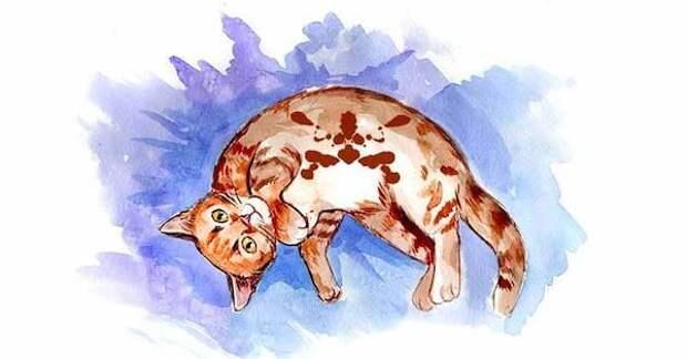 «Кошачий» тест Роршаха: что он расскажет о вашей личности?