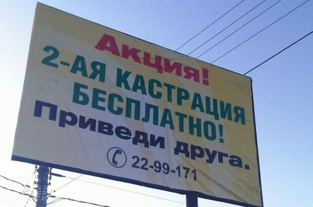 Смешная реклама – пример ветклиники