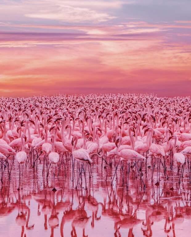 30 удивительных фото Кристины Макеевой прямиком изКении