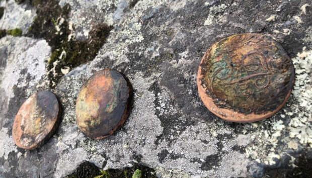 Дайверы Карелии нашли старинные монеты прямо у Соломенского моста