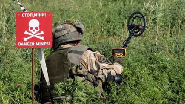 ВСУ установили 500 мин у линии соприкосновения в Донбассе, заявили в ЛНР
