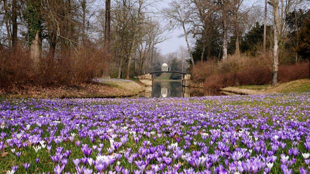 Spring by Kerstin Franz on 500px.com