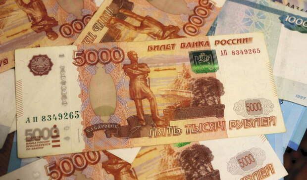 Стал известен самый «богатый» депутат парламента Карелии