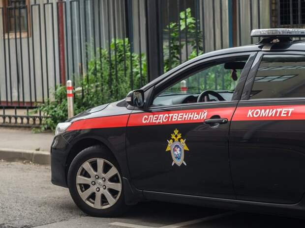 СК начал проверку после того, как детей нашли в захламленной квартире в Ульяновске
