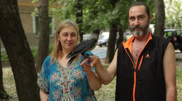 Семья из Алтуфьева спасла жизнь воронёнку, а ранее — летучей мыши