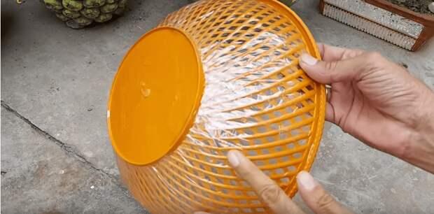 Необычная идея использования пластиковой миски: любителям цветов понравится