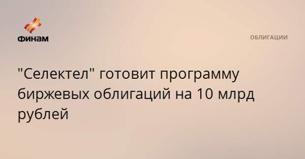 """""""Селектел"""" готовит программу биржевых облигаций на 10 млрд рублей"""