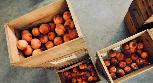 Фермеры получили торговые места в Симферополе