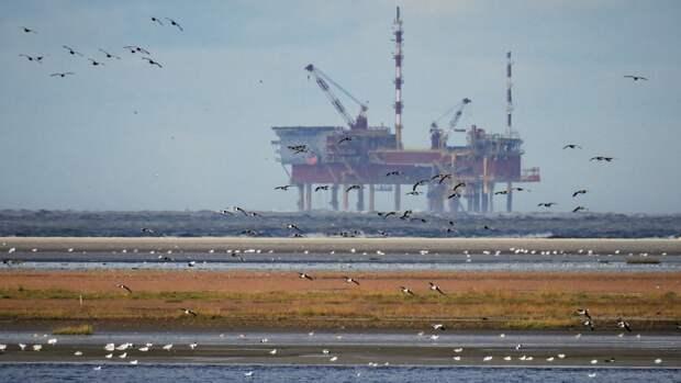Запасы крупнейших нефтяных компаний мира могут иссякнуть через 15 лет