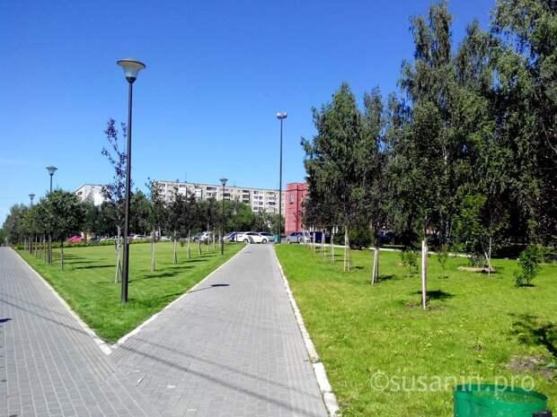 Стало чище: Ижевск оказался на 64 месте рейтинга самых чистых городов