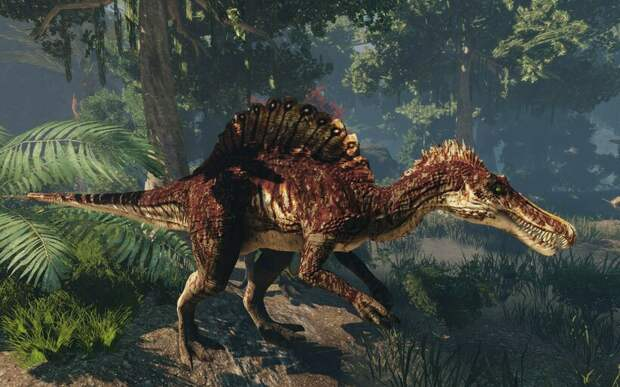 Что общего у динозавров и современных цапель?