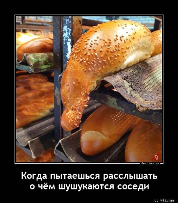 5402287_1615277211_demotivatory4 (612x696, 114Kb)