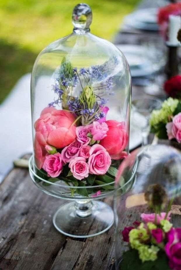 Эти цветы не вянут годами, и вот в чем секрет