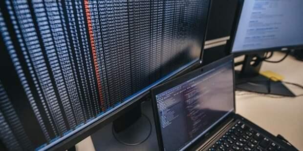 Елена Зяббарова отметила рост поступлений в столичный бюджет от IT-предприятий. Фото: Е.Самарин, mos.ru