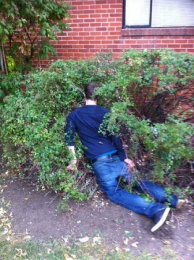 Сработала сила притяжения.   Фото: Pixmafia.com.