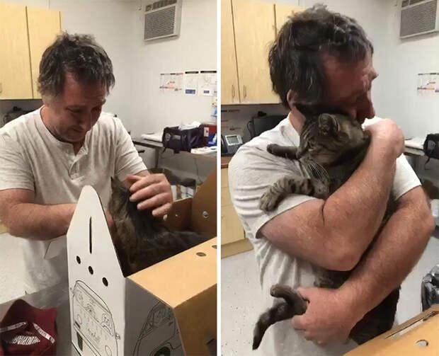 Мужчина встретился со своим котом, пропавшим более 7 лет назад