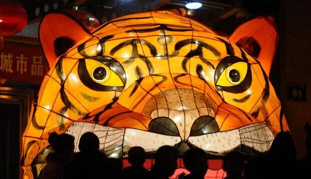 Превращения КНДР в полноценного «азиатского тигра» ожидать не стоит