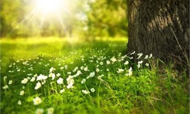 17 мая кировчанам советуют подарить кому-нибудь сувенирчик и провести вечер в кругу близких людей