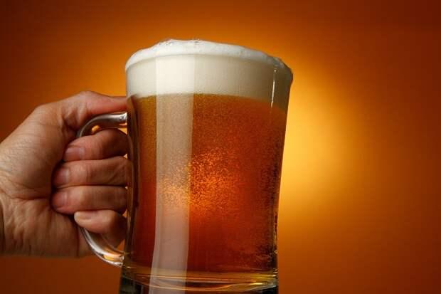 Чем будет полезно пиво-кефир, которое создают петербургские ученые