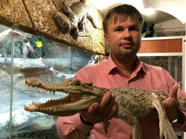 Десять лет подряд в Крыму заказывали этого крокодила