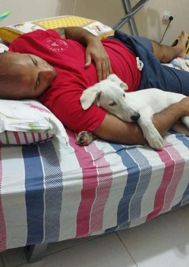 Он закрыл глаза, уснул, а когда понял, что его везут домой, стал улыбаться