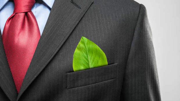 Вся нынешняя зеленая истерика строится на заведомой лжи