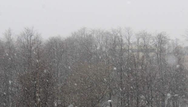 Субботники в Петрозаводске перенесли из-за снегопада