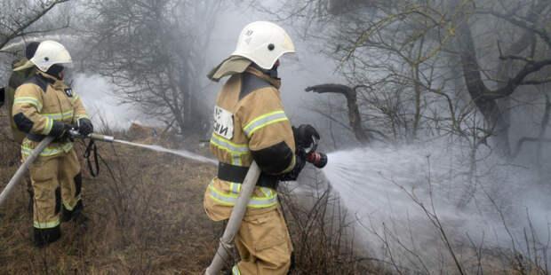 Горячий сезон: в России за сутки ликвидировали около 140 лесных пожаров