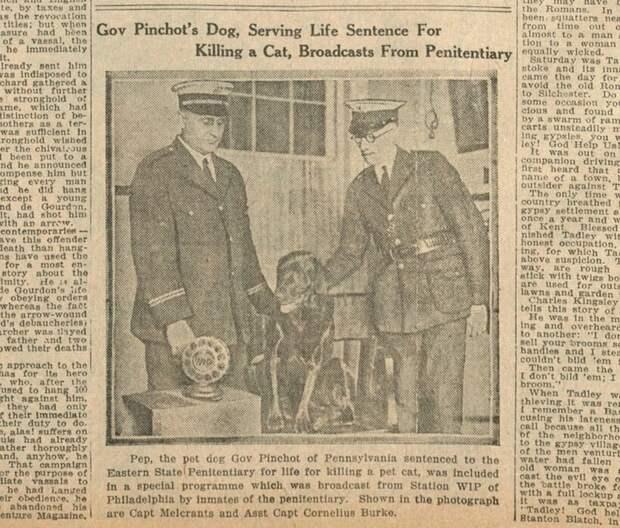 Газета Boston Daily Globe, фото: wuot.org