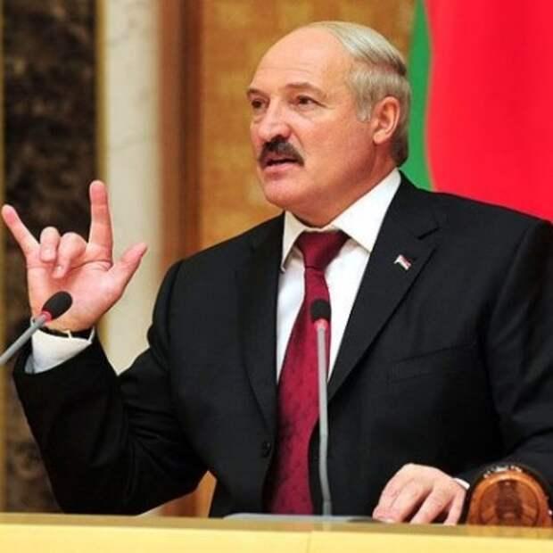 Лукашенко выкопал 105 тонн картошки!