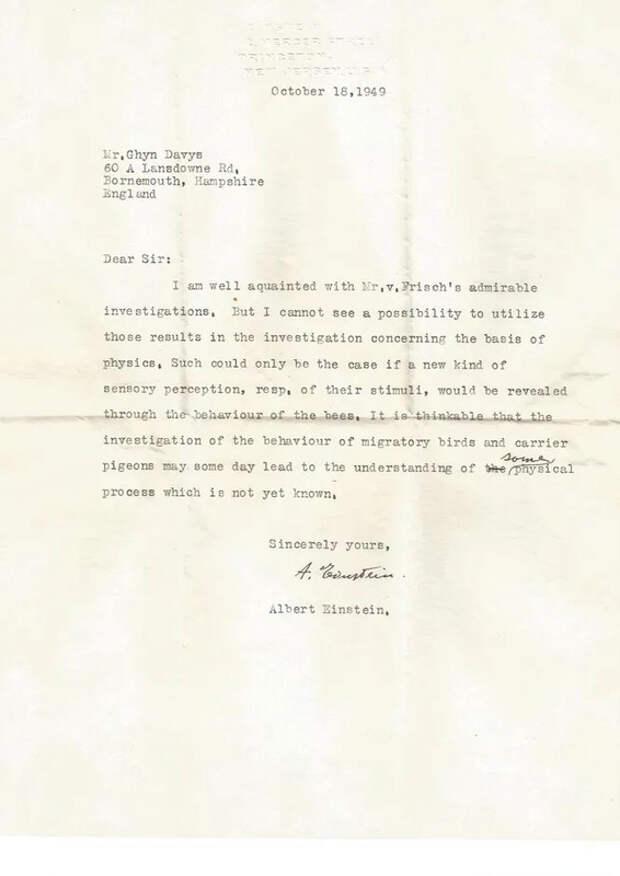 Потерянное письмо открыло теорию Эйнштейна о сверхчувствах животных