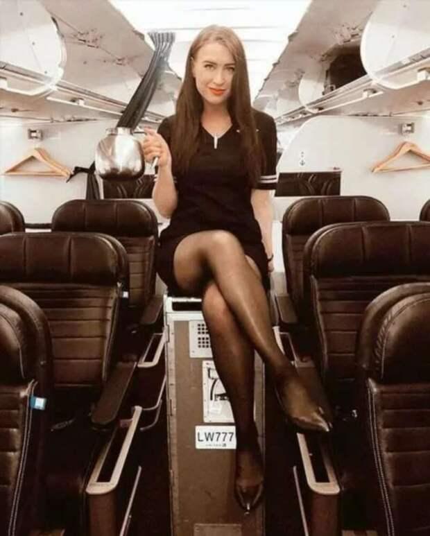 Ножки стюардесс. Подборка chert-poberi-styuardessy-chert-poberi-styuardessy-02020717092021-2 картинка chert-poberi-styuardessy-02020717092021-2