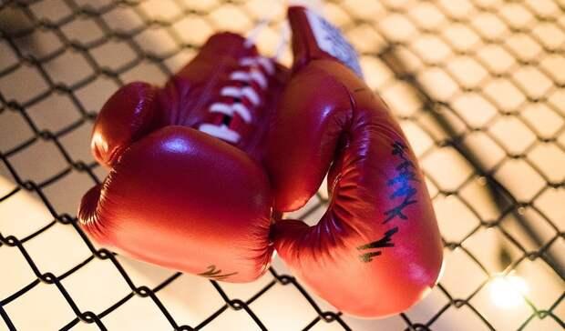 Бывший чемпион мира назвал Усика боксером сидеальной техникой