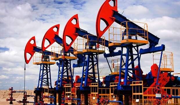 Коммерческие запасы нефти встранах ОЭСР вапреле оказались ниже среднего пятилетнего уровня— ОПЕК