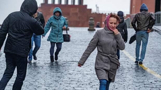 Москвичей призвали быть осторожными из-за сильного ветра в субботу