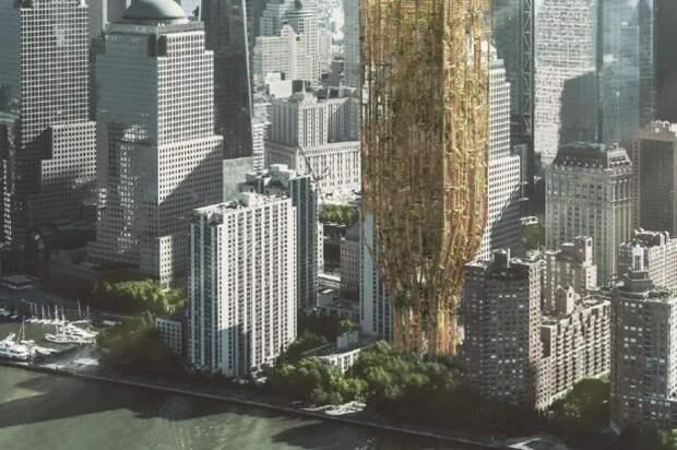 Первое место наконкурсе небоскребов будущего заняла башня изживых деревьев