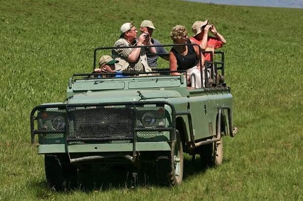 На Кубани усилят борьбу с нелегальным джиппингом
