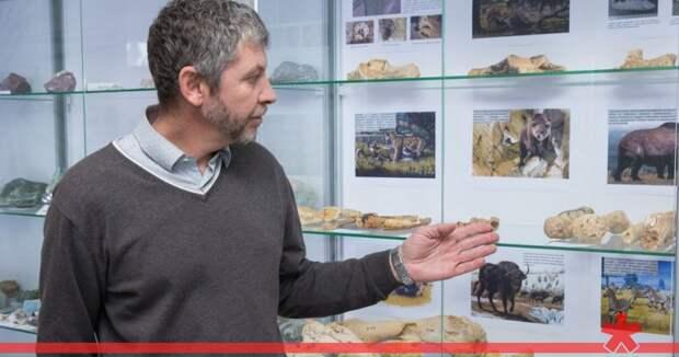 Древние носороги и тигры: в КФУ показали останки из пещеры под «Тавридой»