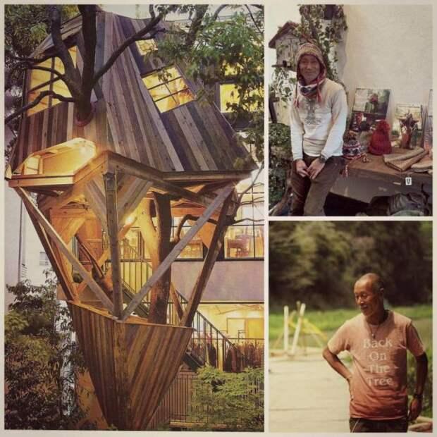 Takashi Kobayashi – уникальный мастер, создающий колоритные домики на дереве (Япония).   Фото: designmadeinjapan.com.