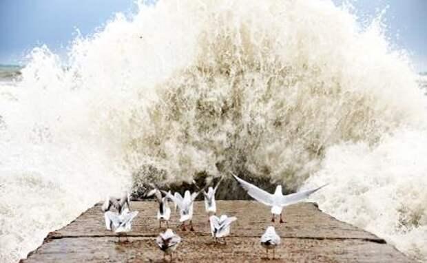 Сочи накроет волна. Питер и Севастополь удар стихии сдержат