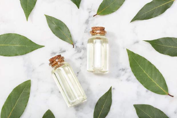 Чем лавровое масло так полезно для красоты и здоровья?