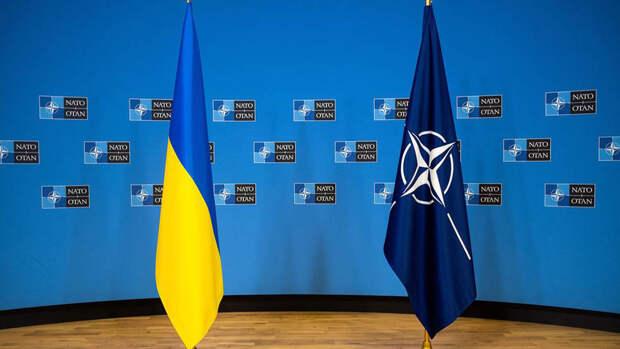 Bloomberg: автономия для Донбасса может заблокировать вступление Украины в НАТО