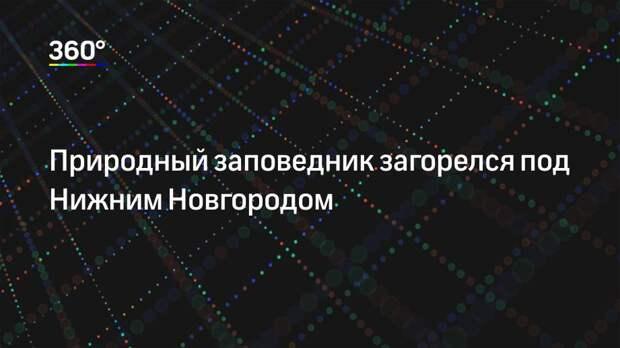 Природный заповедник загорелся под Нижним Новгородом