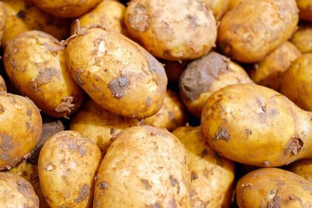 Мясников посоветовал россиянам есть картофельную кожуру