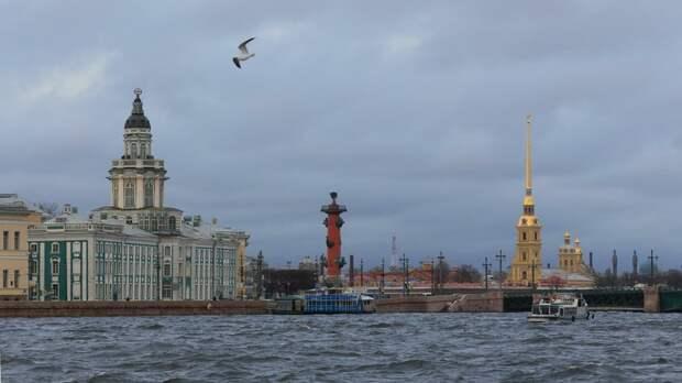 Синоптик рассказал о погоде в Петербурге в ближайшие дни