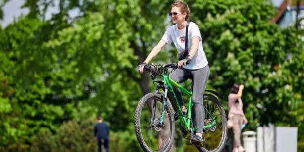 Сергунина: Более 2000 дворов обустроят в этом году по программе «Мой район». Фото: М. Денисов mos.ru