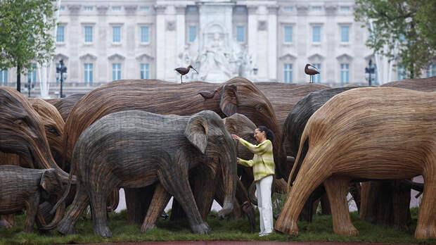 """По Лондону проведут """"стадо"""" из моделей слонов в натуральную величину"""