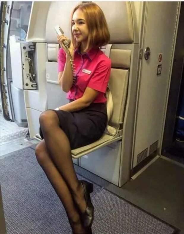 Ножки стюардесс. Подборка chert-poberi-styuardessy-chert-poberi-styuardessy-02020717092021-14 картинка chert-poberi-styuardessy-02020717092021-14