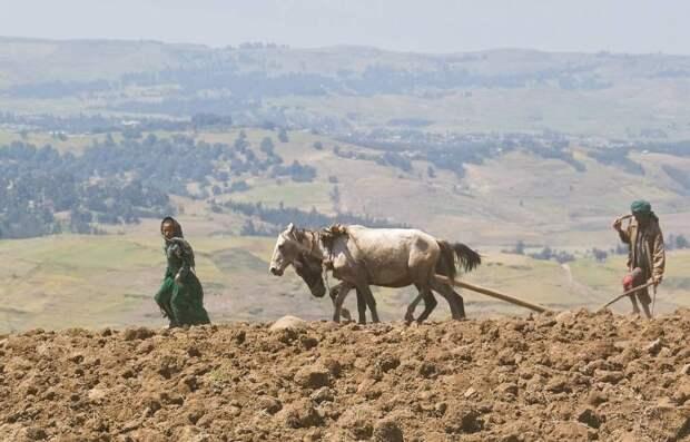 RoofofAfrica16 «Крыша Африки»: впечатляющая красота Эфиопского нагорья